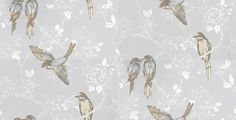 Songbird Porcelain (1616/047) - Prestigious Wallpapers - An elegant and bold wallpaper design featuring stylised birds on a trailing floral background. Shown here in pale blue and white with multi coloured birds.Other colourways are available. Please request a sample for a true colour match. Paste-the-wall product.