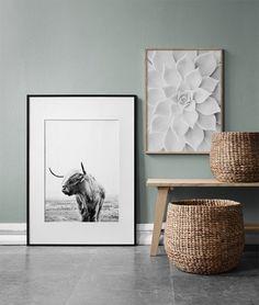 Highland cow - 50x70White succulent - 50x70...