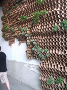 Surfacedesign, Inc.'s plant cardboard verticle wall.. Looks like bamboo adheased to a wall to be used with living plants. A verticle living wall.