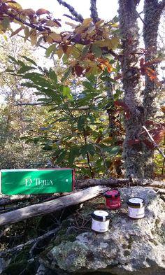 La Tejea (Conservando lo natural)