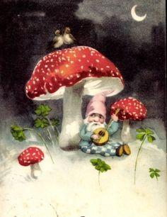 .Gnome and mushroom