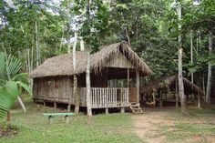 Chico Mendes Environmental Park - Rio Branco, Acre