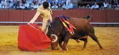 Notiferias Toros en Venezuela y el Mundo: López Simón, sprint con sabor a victoria