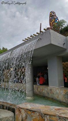 Jardín Botánico, Caguas