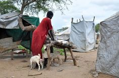 South Sudan One Year On