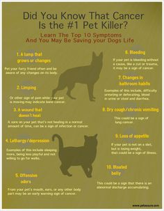 The Top Ten Warning Signs of Pet Cancer - May is Pet Cancer Awareness Month. Share a pic & story of a pet you know that survived cancer and Pet Assure will donate $1 to pet cancer research ----> http://a.petassure.com/1sPCdQQ