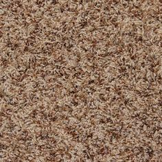 Install air castle rock frieze carpet from firststepflooring today. Frieze Carpet, Gallon Of Water, Castle Rock, Bel Air, Damask, Household, Diy, Flooring, Stains