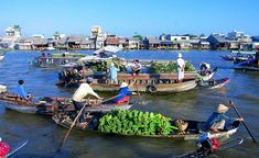 Mekong Delta Floating Market Day Trip to Cai Be and Vinh Long from Ho Chi Minh City in Vietnam Asia Vietnam Tours, South Vietnam, Vietnam Travel, Chau Doc, Ho Chi Minh Ville, Ho Chi Minh City, Can Tho, Qi Gong, Kung Fu