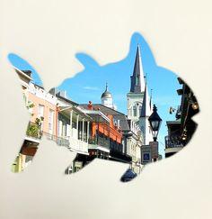 Bonjour y'all! #findadventurefriday #neworleans #skipshot #southerntide