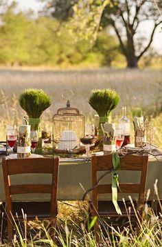 Grassy field formal picnic
