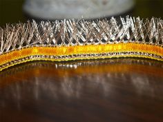 Zari Kiran Laces / Metallic Gold Tinsel Fringe Eyelash Sewing Trim, Fringe Lace for Sari Border / Lehenga Dresses / Gota Ribbon for Wedding