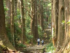 Hiking the Kumano Kodō: Japan's ancient pilgrimage route https://www.lonelyplanet.com/japan/kansai/kii-hanto/travel-tips-and-articles/hiking-the-kumano-kodo-japans-ancient-pilgrimage-route/40625c8c-8a11-5710-a052-1479d276808e