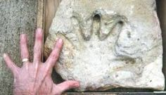There are a number of fossils that just don't make geological or historical sense. A fossil of a human handprint, for example, was found in limestone estimated to be 110 million years old. What appears to be a fossilized human finger found in the Canadian Arctic also dates back 100 to 110 million years ago. And what appears to be the fossil of a human footprint, possibly wearing a sandal, was found near Delta, Utah in a shale deposit estimated to be 300 million to 600 million years old.