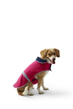 Dog Squall Jacket   from Lands' End