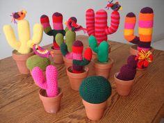 Cactus tejido en lana en un color
