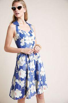 Anthropologie Camellia Collared Dress on Mercari Petite Midi Dress, Striped Midi Dress, Petite Dresses, Belted Dress, Knit Dress, Isle Of Man, Halter Maxi Dresses, Blue Dresses, Dresses Dresses