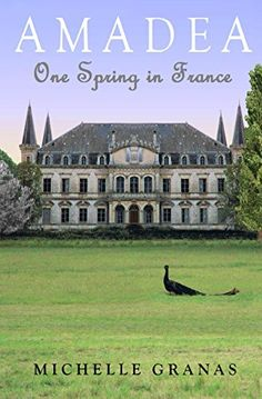 Amadea: One Spring in France - http://www.justkindlebooks.com/amadea-one-spring-in-france/