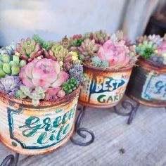 Outdoor Crafts, Succulents In Containers, Metal Art, Container Gardening, Decoupage, Diy And Crafts, Planter Pots, Recycling, Projects To Try