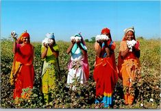 The shy ladies of Rajistan