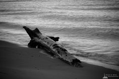 Washed Up, Deception Pass State Park, Washington, 2016   Click the picture above for information on purchasing a fine art photography wall print.   #blackandwhite #seascape #nature