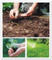 Huerto ecológico y macetohuerto ecológico urbano agricultura ecológica sostenible