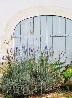 The blue door with the lavender in front- can smell it now!