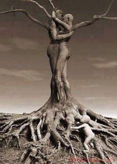 C'è chi nella staticità delle radici vede solo la perenne immobilità dell'albero, e fa di ciò un limite; c'è poi chi, sempre nelle radici di quello stesso albero vede la solidità delle basi, è capace di alzare lo sguardo e vedere quanto movimento e dinamismo ci sia a livello di rami e fronde... Questione di prospettiva Relativismo: dipende sempre tutto da che punto di vista si guardano le cose. La versatilità e l'ingegno stanno nel fare un punto di forza ciò che i più vedono come un limite.