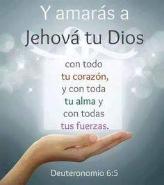 Somos Testigos de Jehová - Community - Google+ | tarjetas | Pinterest