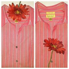 Westbound Gold Label Non-Iron Blouse Classic red striped long-sleeved shirt. Perfect for the office or a casual dress down day. 100% cotton Westbound Gold Label Tops Blouses