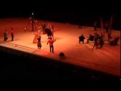 Een van de hoogtepunten uit mijn leven: In 2012 in het voorprogramma van de Spaanse Rijschool dansen. Alle drie de voorstellingen waren uitverkocht.