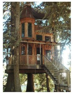 tree house to the extreme