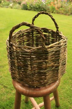 Weaving a basic basket GREAT instructions for using BRAMBLES to weave a basket!   Go in the woods and pick!!!