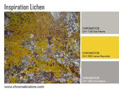 Le contraste adouci du jaune moutarde et des gris colorés chauds ensoleille cette harmonie Nature et contemporaine. www.chromaticstore.com