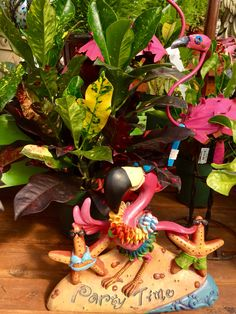 Flamingos sure look at home among these crotons splashed with color. Make it more tropical at home or office -- come pick out a new houseplant!