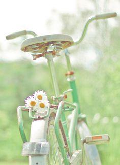 Pastel mint bike