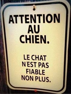 Le chat n'est pas fiable non plus ! / Beware of dog. The cat is not weak either ! Funny Facts, Funny Quotes, Funny Signs, Jurrassic Park, Image Fun, Happy Fun, Humor, Words Quotes, Memes