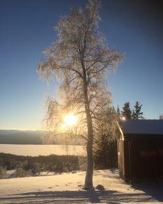 Winter day in Ottsjö Fjällby