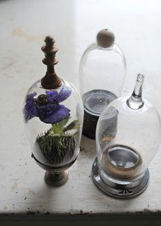 Broken wine glasses as mini glass domes!