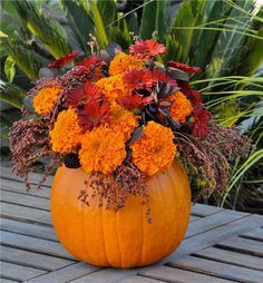 From FlowerDuet.com: Pumpkin in a Vase with Red Gerber Daisies, Broomcorn, Marigolds and Smoke Bush. Learn all the tips and tricks on how to use a pumpkin as a vase for your Halloween flower designs and Thanksgiving Dinner Centerpieces. #FinishWithFlowers