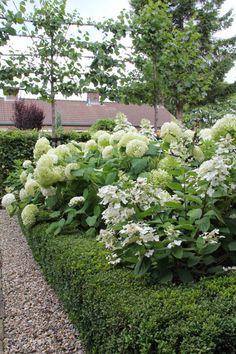 mooie stijlvollet tuin