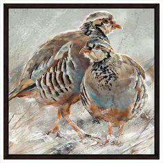 Red Legged Partridge - Collier & Dobson