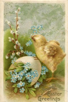 Easter postcard, antique postcard, Easter Vintage Postcard, Chick, Easter Egg with flowers Easter Art, Hoppy Easter, Easter Crafts, Easter Bunny, Easter Chick, Vintage Greeting Cards, Vintage Postcards, Gravure Illustration, Easter Parade