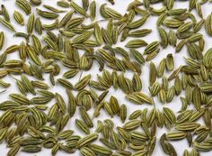 Fennel Tea For Hair