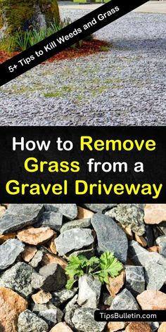 Learn how to make a weed killer out of vinegar to kill unwanted grass in your gravel driveway. Prevent grass and weeds from returning by using natural weed control methods and recipes. Driveway Edging, Diy Driveway, Stone Driveway, Driveway Landscaping, Lawn Edging, Driveway Ideas, Driveway Entrance, Walkway Ideas, Path Ideas