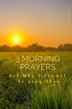 I'm pursuing a joyful life by pursuing the Lord. Here are three prayers I'm praying each morning to remind myself how active God is in my every day.