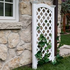 Best 25 Arch Trellis Ideas On Pinterest Garden Arch Trellis White Trellis Arch
