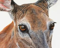 Ester Curini painting:Jane-Doe detail