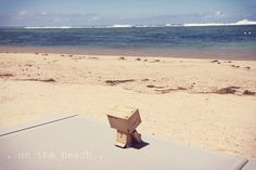 . on the beach . {P52} #37 Danbo