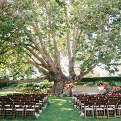 An intimate and stunning outdoor ceremony at the historic Adamson House in Malibu, California! Photos by Kate Osborne