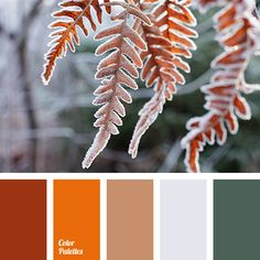 brick red, bright orange, brown, dark green, dark red, gray, Orange Color Palettes, pale gray, shades of red, winter color palette, winter color palette 2016.